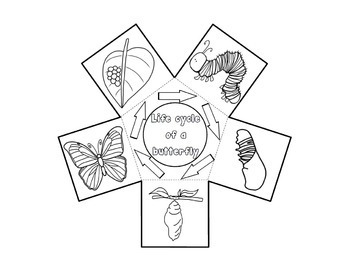 Life Cycle of a Butterfly Craft - Interactive Crafts - Science Crafts Series