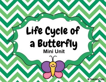 Life Cycle of a Butterfly Mini Unit