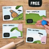 Life Cycle of a Butterfly Play Dough Mats, Metamorphosis Activity for Spring