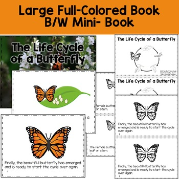 Butterfly Life Cycle Reading, Writing, and Math