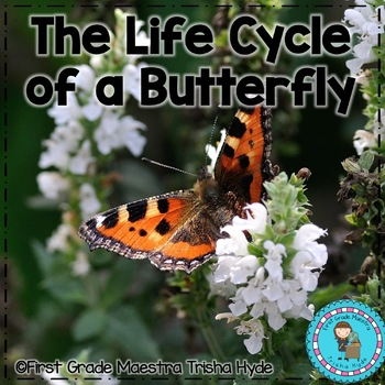 Life Cycle Butterfly Reading, Writing, and more.