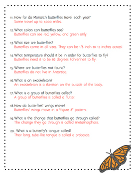 Life Cycle of a Butterfly Scavenger Hunt