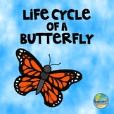 Life Cycle of a Butterfly:  Sequencing Activity and Work Sample