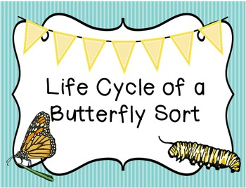 Life Cycle of a Butterfly Sort