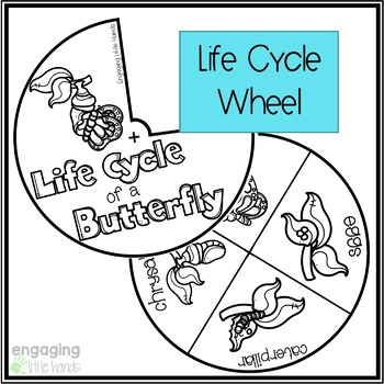 Life Cycle of a Butterfly Tab Flipbook