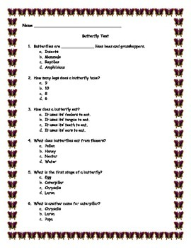 Life Cycle of a Butterfly Test