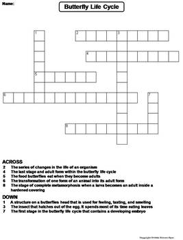 Life Cycle of a Butterfly Worksheet/ Crossword Puzzle