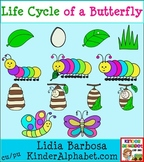 Life Cycle of a Butterfly in Color