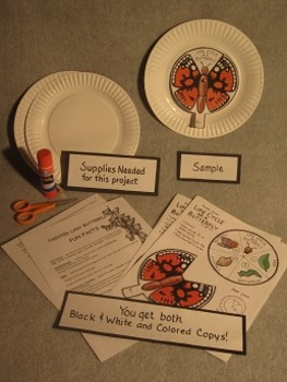 Life Cycle of a Butterly. Paper Plate Fun Craft Art