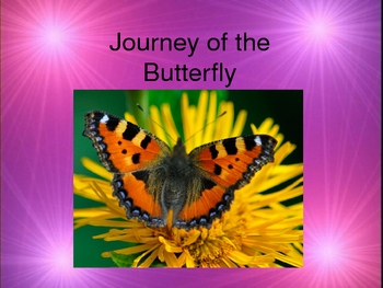 Life Cycle of a Caterpillar/Butterfly Powerpoint vocab and activity