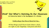 "Life Cycle of a Chick: ""Chick Out"" What's Hatching"