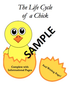 Life Cycle of a Chick Informational Writing Packet