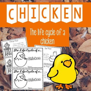 Life Cycle of a Chicken | 64 Pages for Differentiated Lear
