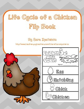 Life Cycle of a Chicken Flip Book