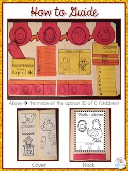 Life Cycle of a Chicken Lapbook {with 10 foldables} Chicken Life Cycle INB