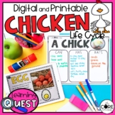 Digital Life Cycle of a Chicken Activities | for Distance Learning
