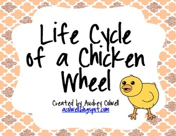 Life Cycle of a Chicken Wheel Printable