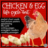 Chicken and Egg: Life Cycle Unit