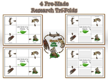 Life Cycle of a Cicada Research Tri-Folds and Graphic Organizers