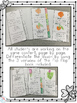 Life Cycle of a Shamrock Flip Flap Booklet { Differentiated }