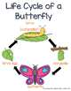 Life Cycle of a Deer and Butterfly Resources