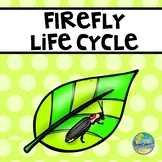 Life Cycle of a Firefly