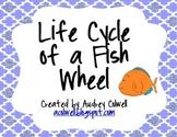 Life Cycle of a Fish Wheel