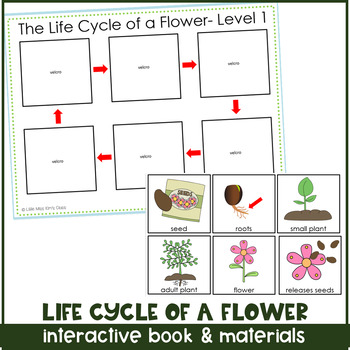 Life Cycle of a Flower Adapted/ Interactive Book for Special Needs