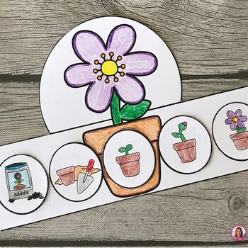 Life Cycle of a Plant Hat (Flower Sequencing Activity)