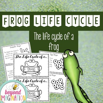 Life Cycle of a Frog | 52 Pages for Differentiated Learning + Bonus Pages