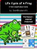 Life Cycle of a Frog | 3 Part Cards PreK | English
