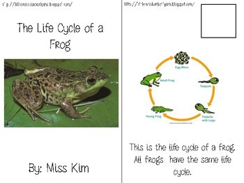 Life Cycle of a Frog Adapted/ Interactive Book