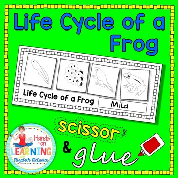 Life Cycle of a Frog - DIFFERENTIATED
