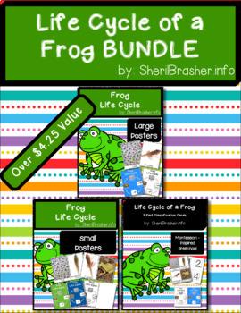 Life Cycle of a Frog | BUNDLE | English {SAVE 20%}