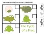 Life Cycle of a Frog Beginning Sound preschool biology printable learning ga