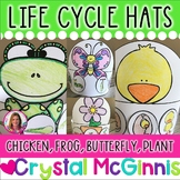 Life Cycle of a Frog, Chicken, Butterfly, & Plant HATS  (S