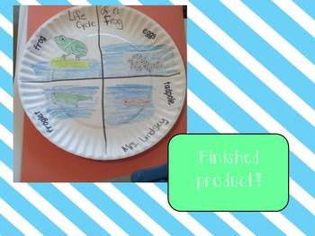 Life Cycle of a Frog  {ELA, Science and Craftivities}