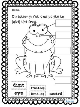 Life Cycle of a Frog ELA and Science Printables for Kindergarten and First Grade