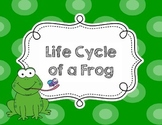 Life Cycle of a Frog - Flash Cards