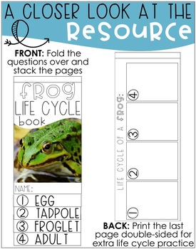 Life Cycle of a Frog {Flip Book}