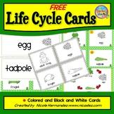 Life Cycle Free- FROG