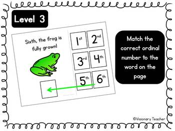 Life Cycle of a Frog - Interactive Books (SET OF 3)