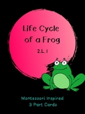 Life Cycle of a Frog: Montessori Inspired 3 Part Cards: 2.L.1