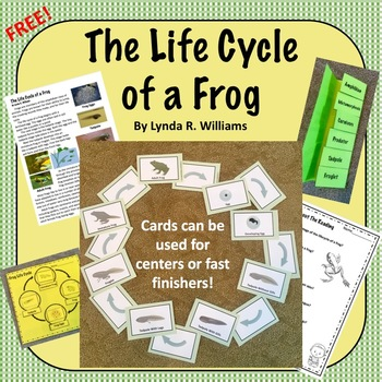 Life Cycle of a Frog Nonfiction Article, Sorting Cards and Response Pages