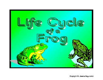 Life Cycle of a Frog-Posters