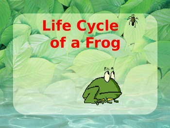 Life Cycle of a Frog Powerpoint