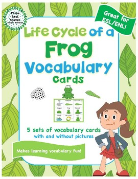 Life Cycle of a Frog Vocabulary Cards - Great for ESL/ENL