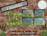 Life Cycle of a Frog craftivity FREEBIE!