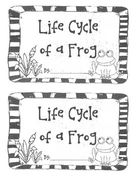 Life Cycle of a Frog - small book