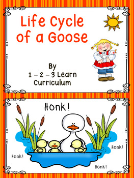 Life Cycle of a Goose